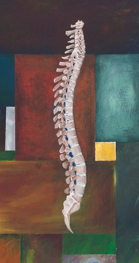 spinal-column-sara-young